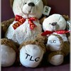new-tlc-bear
